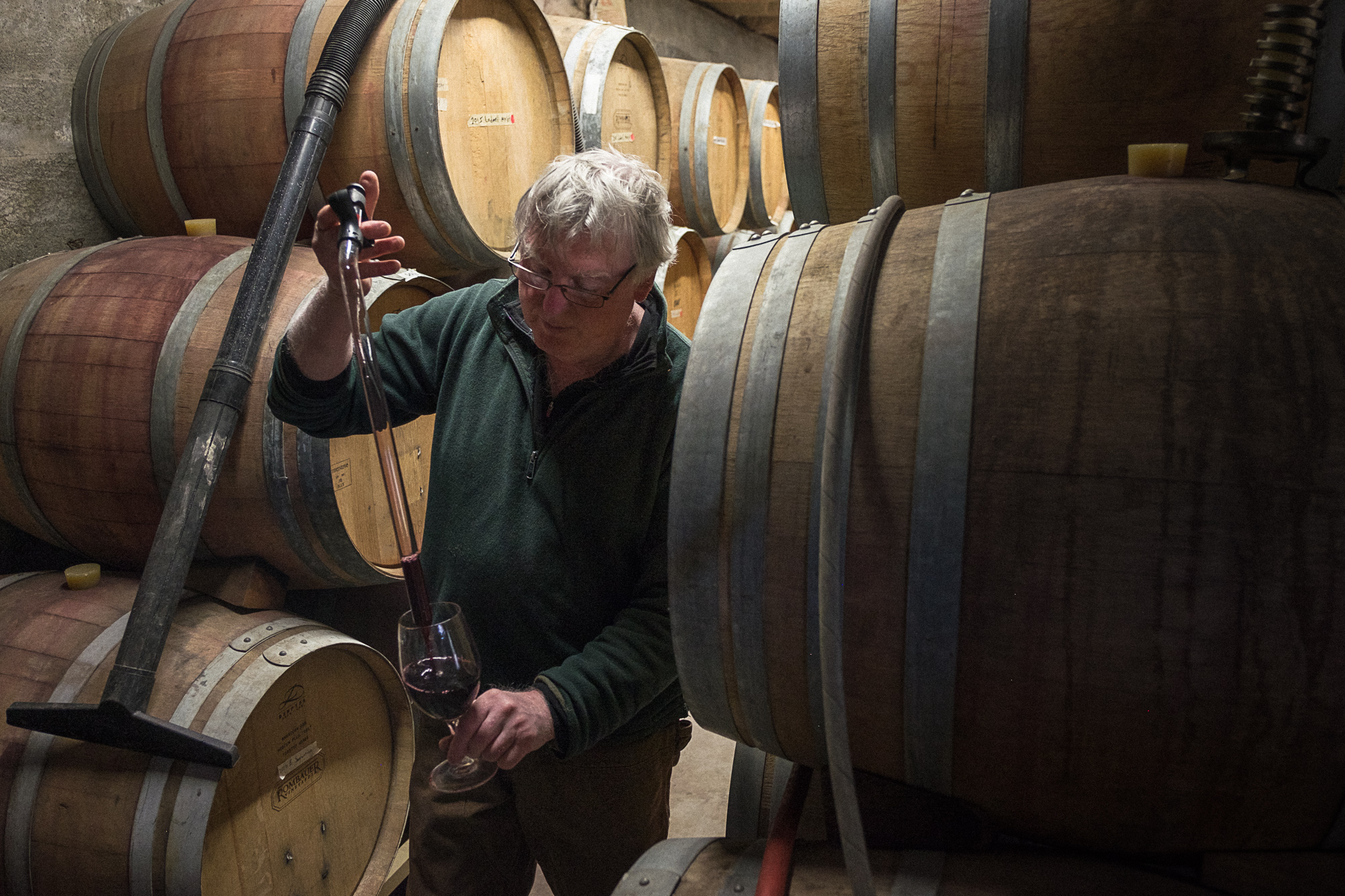 Dennis Raines, Assistant Winemaker at Wilridge Winery (Image: Paola Thomas/Seattle Refined)