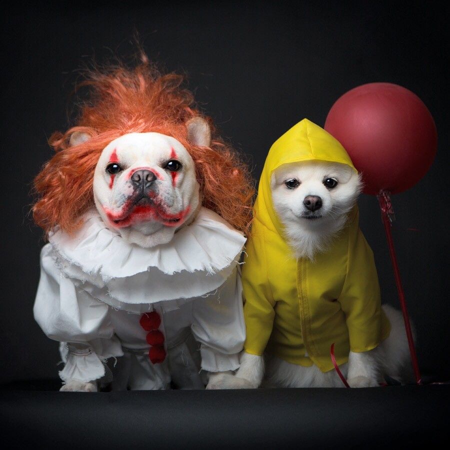 IMAGE: IG user @sebastianlovesluna / POST: We all float #ITsHalloween #happyhalloween