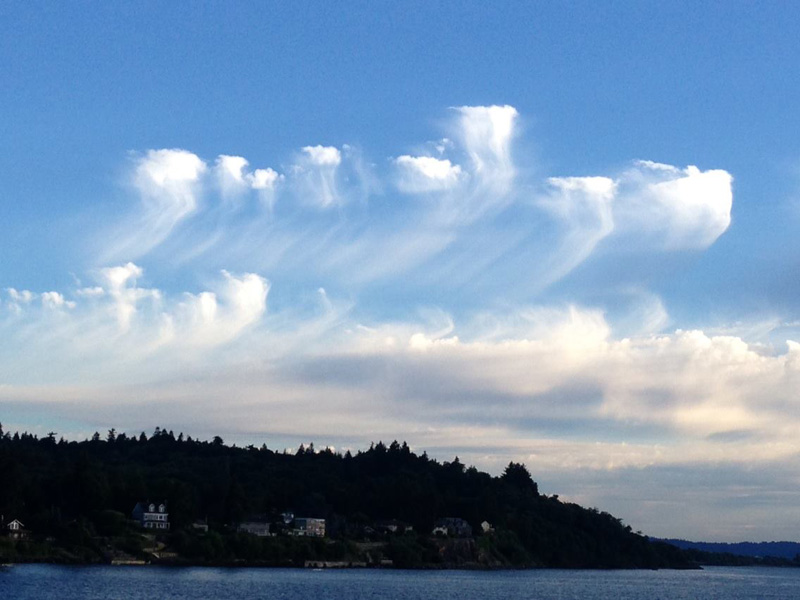 """Mare's Tails"" -- officially known as cirrus clouds dance over West Seattle on July 1, 2014."