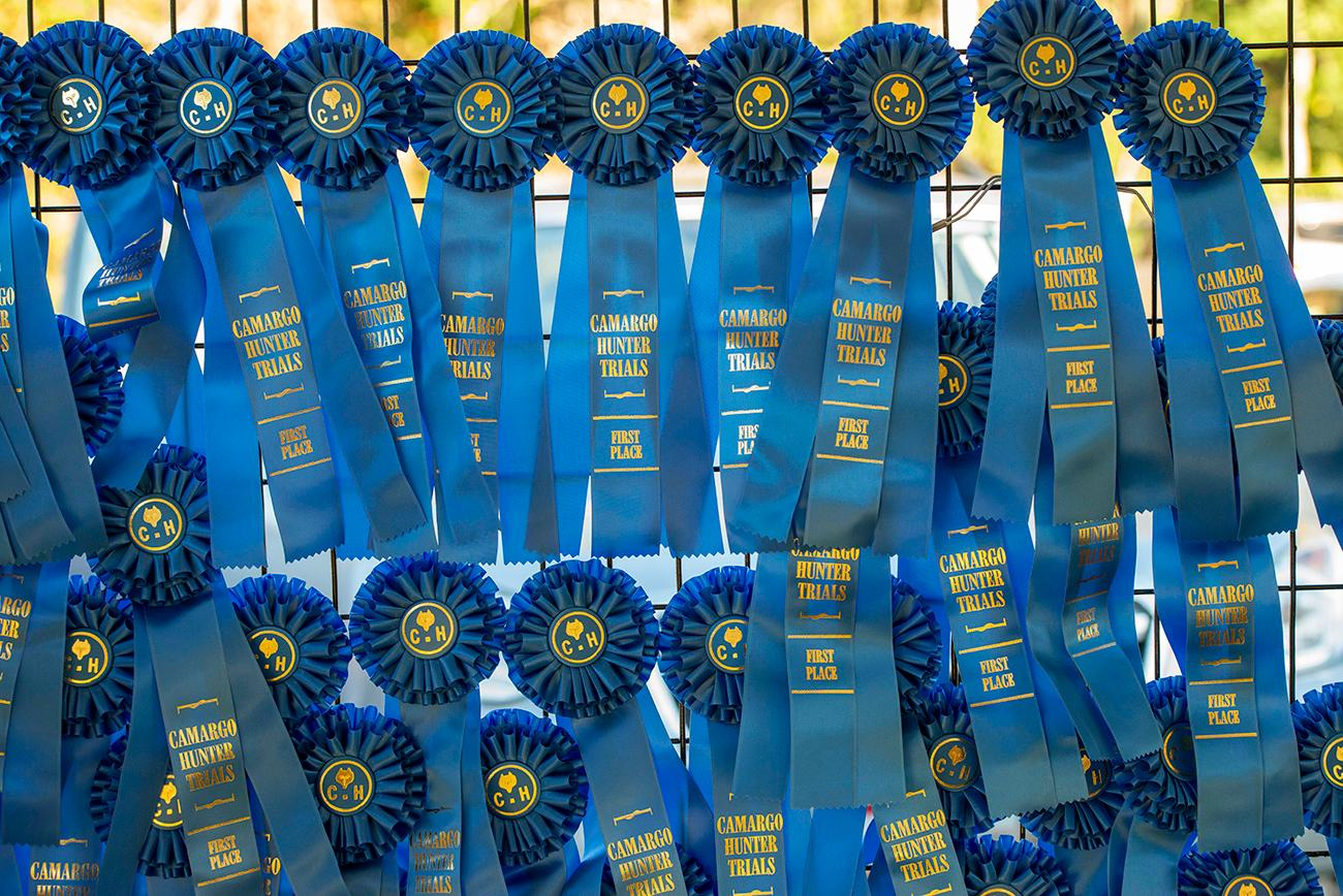 The Blue Ribbons for the competitors who take first place in their division{ }/ Image: Joe Simon // Published: 10.6.19