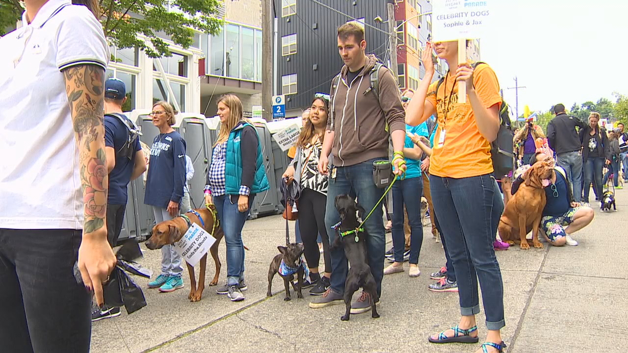 "Dogs and owners dressed up for a dog parade through Seattle's Fremont neighborhood Sunday. The parade celebrated ""the things that make dogs unique."" Animal experts were on hand throughout the parade to offer nutrition advice and tips for owners. KOMO photo."