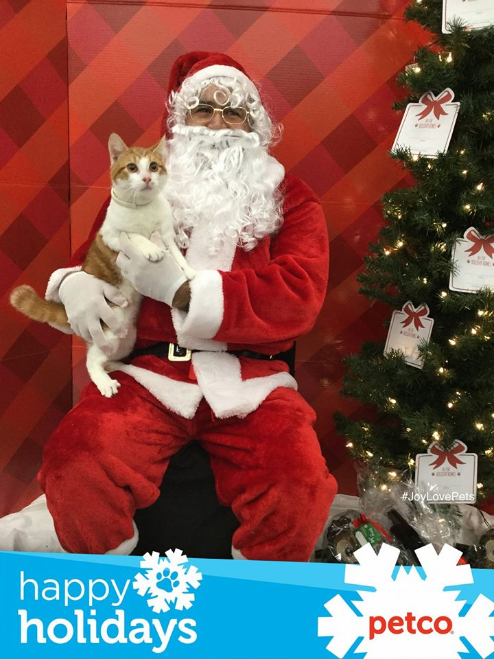 Awww! Pets with Santa! Send us your own photos at Burst.com/KATU!<p></p>