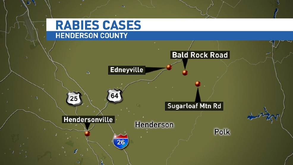 Second rabies case in a week confirmed in Henderson County WLOS