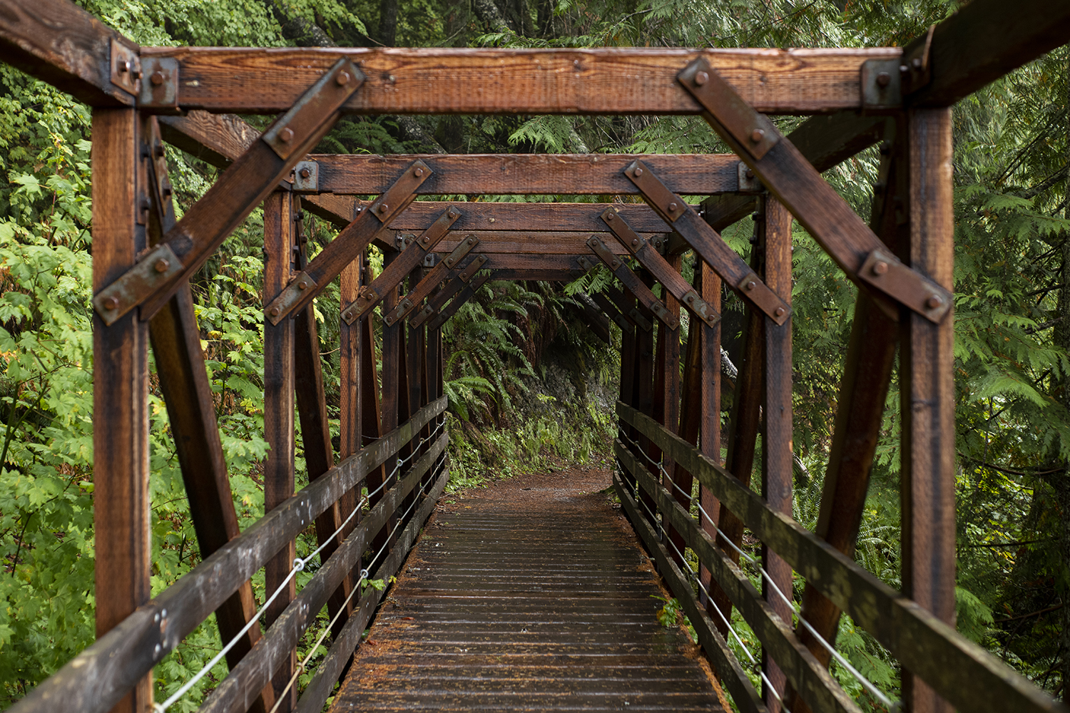 A little over an hour from Seattle the Iron Goat Trail gradually winds through thick forests, beautiful fall foliage and along abandoned tunnels and bridges once used by the Great Northern Railway.{ }(Image: Rachael Jones / Seattle Refined)