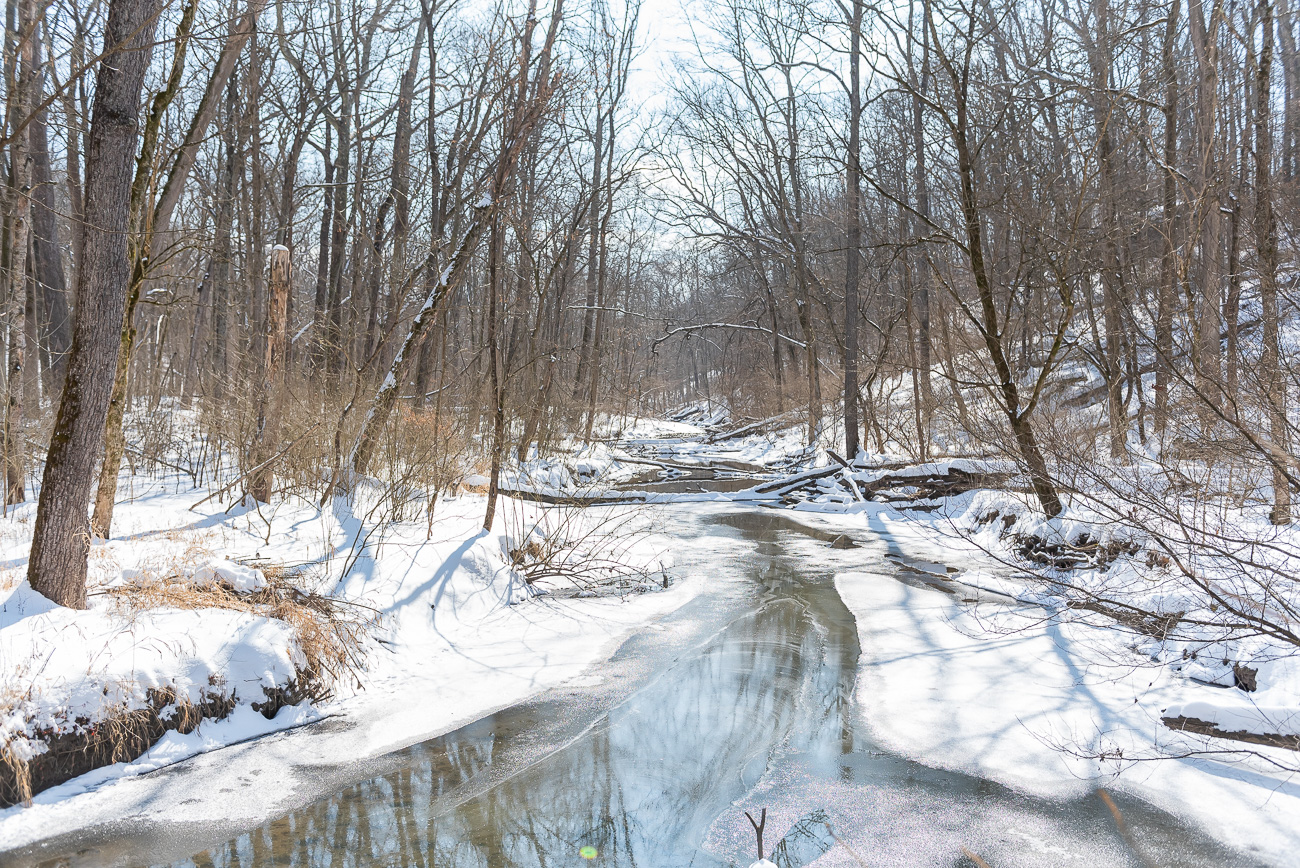 Glen Helen Nature Preserve, located 70 miles north of Cincinnati, is a wonderful destination for hiking every season of the year. In the winter after a fresh snow, it's especially serene. / Image: Mike Menke // Published: 2.22.21