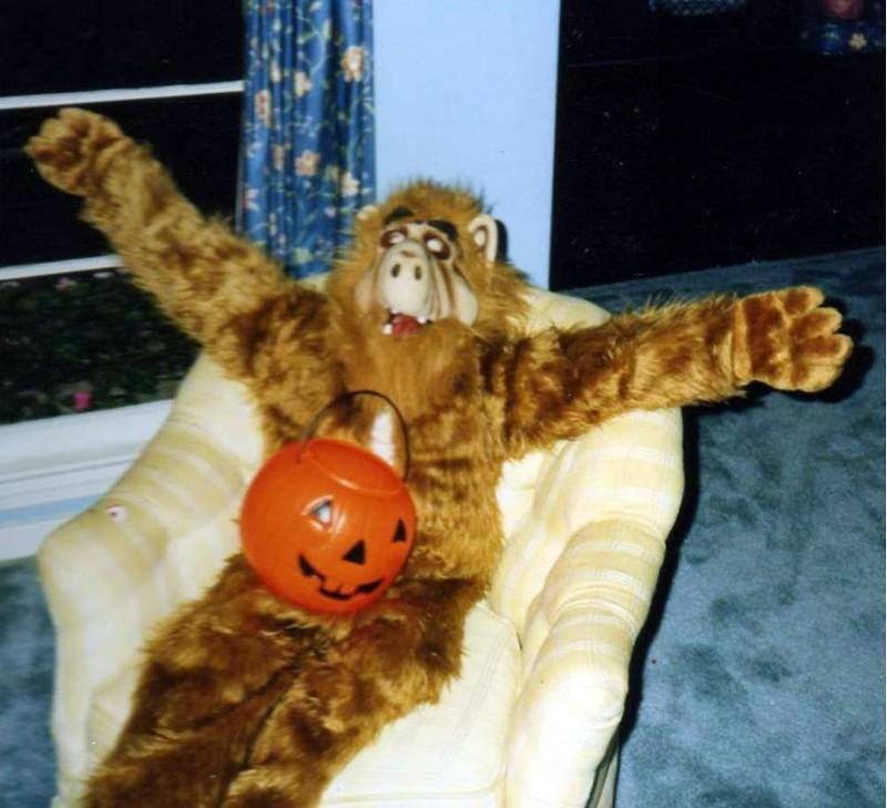 Halloween Throwback:  Alf costume from 1990!