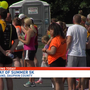 Dog Owners participate in Dog Days of Summer 5k