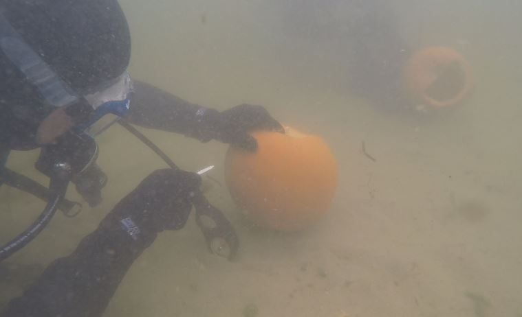 If you thought carving a pumpkin on land was hard, imagine carving one underwater. (Photo Credit: Tom Metevia){ }