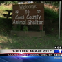 Kritter Kraze: Coos County Animal Shelter hosts annual event Sunday