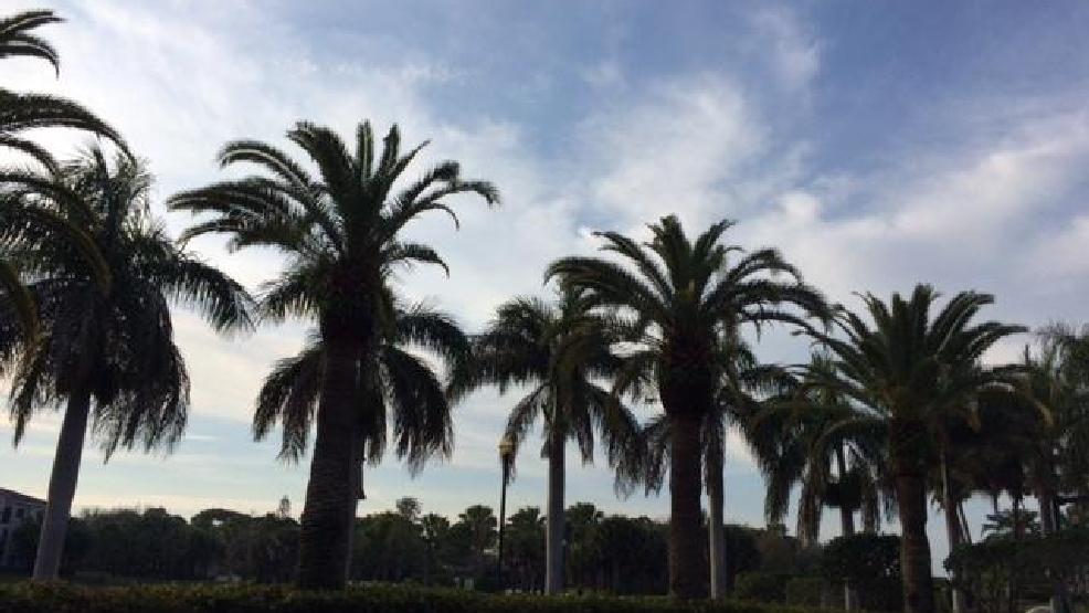 Sun Shining In Palm Beach Gardens. WPEC.