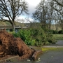 Thousands without power after windstorm barrels through Western Oregon