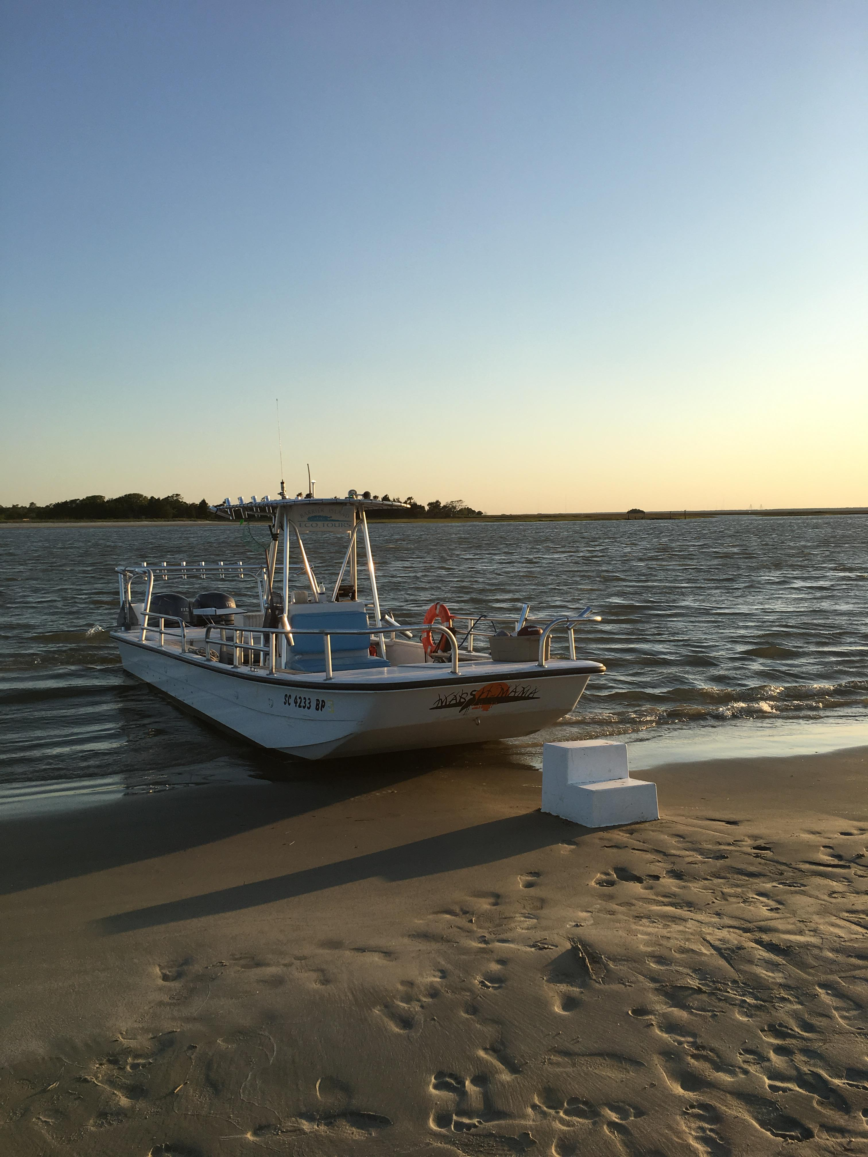 Barrier Island Eco Tours pontoon boat on Capers Island (Photo by Lani Furbank)