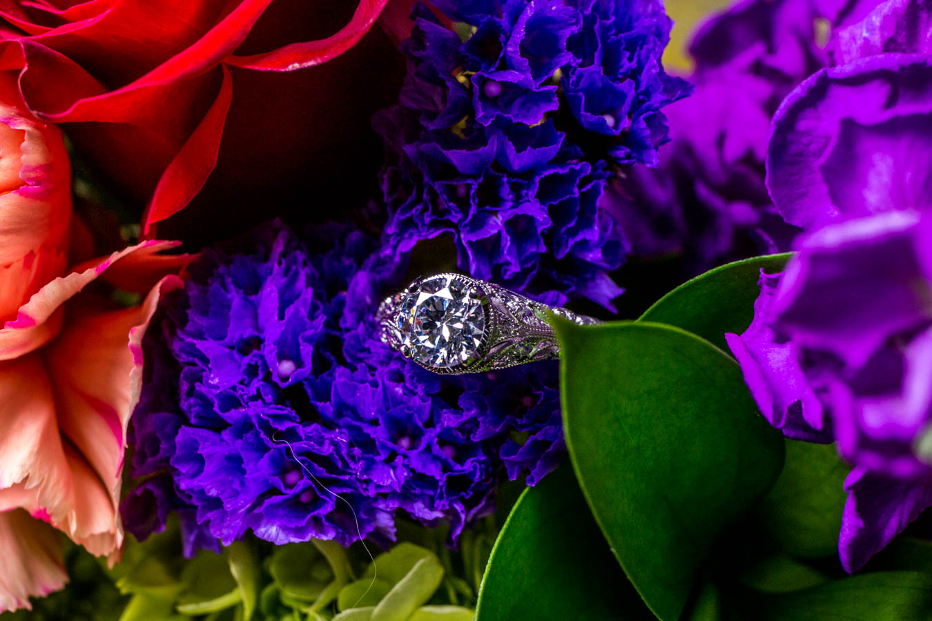 The Stefania Ring / Image: Catherine Viox{ }// Published: 10.8.19