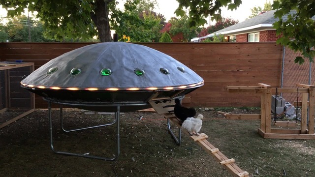 UFO chicken coop is out of this world (KOIN via CNN Newsource)