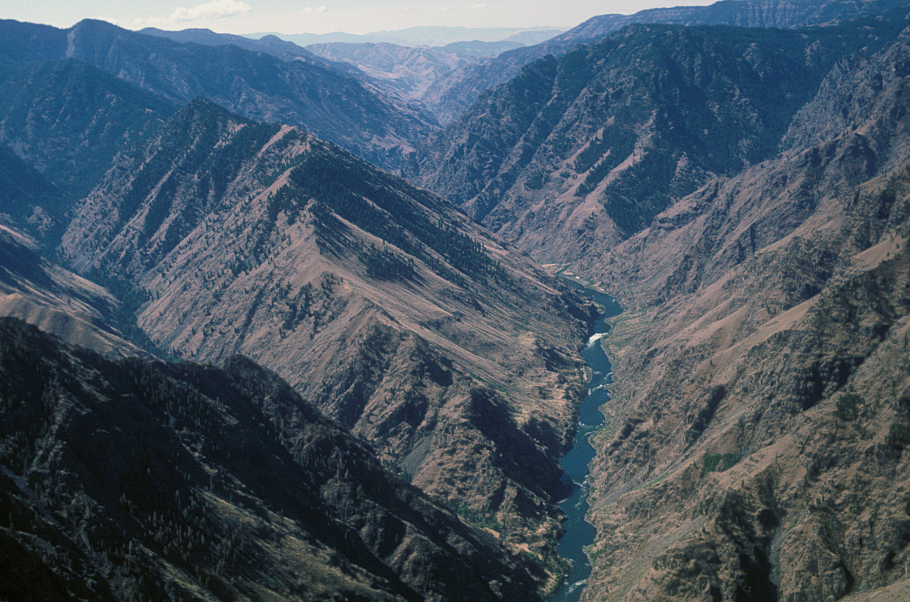 View of Hells Canyon with the Snake River in the Hells Canyon National Recreation Area on the Wallowa Whitman National Forest (USDA Forest Service)