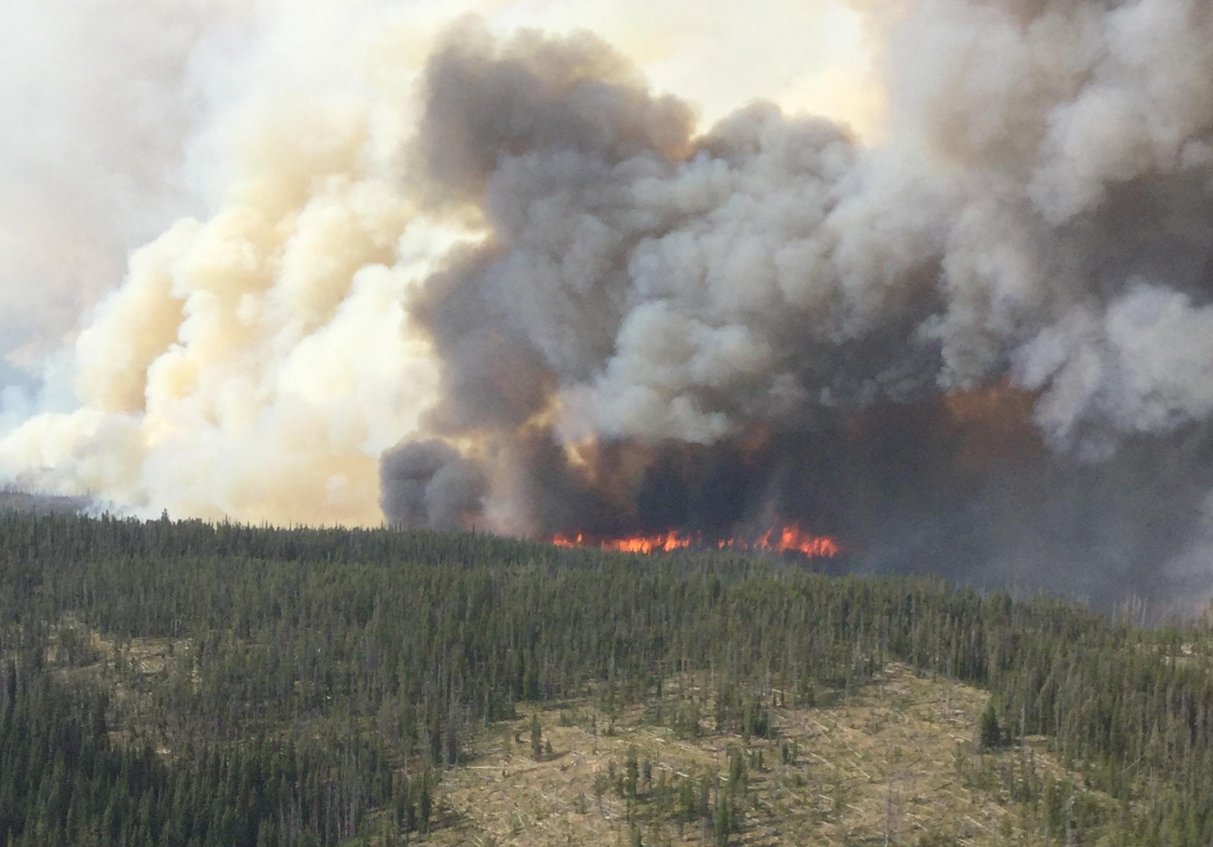 Fire officials say the Highline and Goat Fires, which is burning about 23 miles east, northeast of Warren, received spotty precipitation on Sunday with some areas receiving up to a half inch of rain. (InciWeb)
