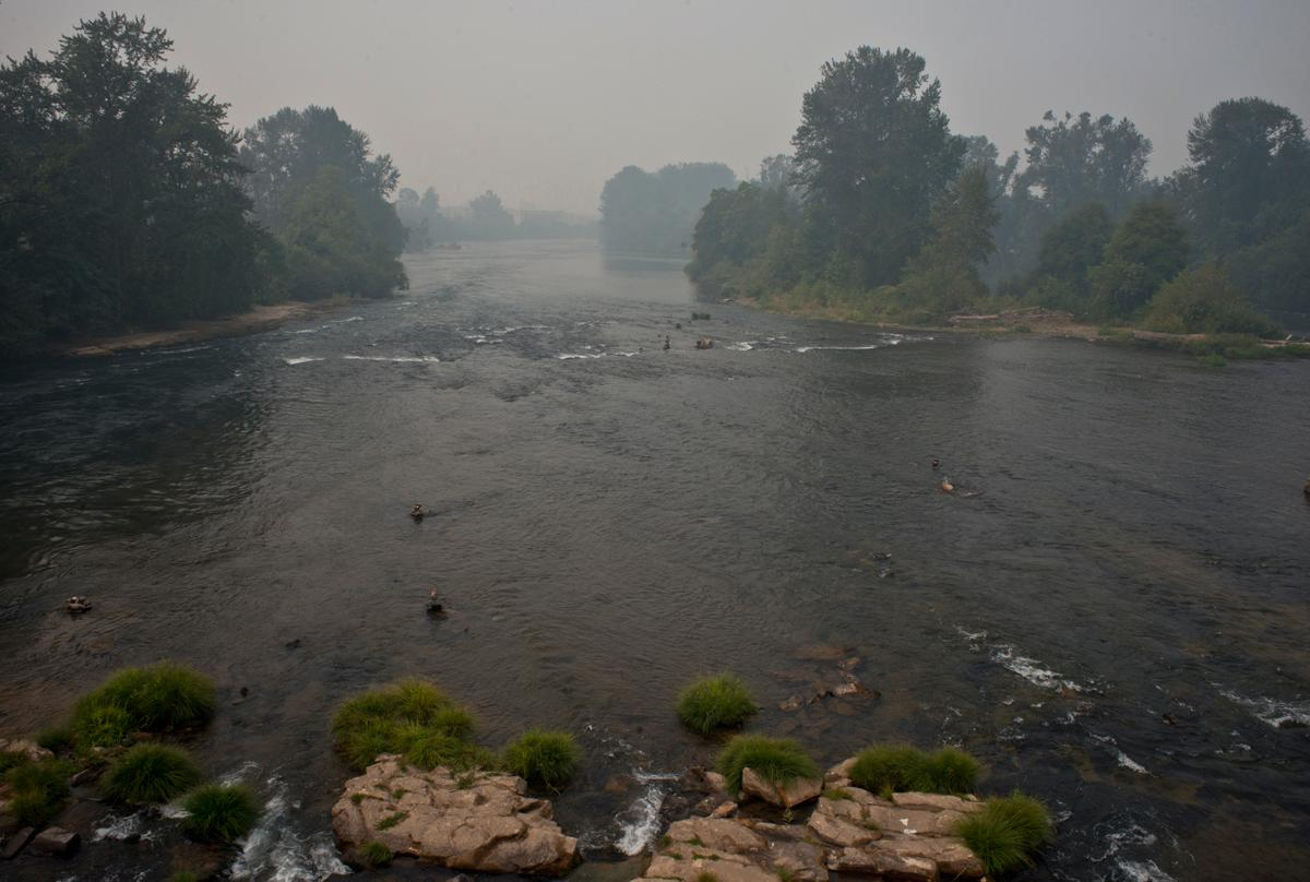 The Willamette River looking west from the Autzen footbridge at midday on Sunday. Photo by Dan Morrison, Oregon News Lab