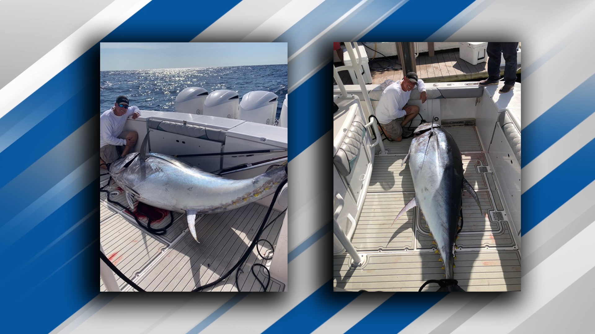 Captain Mike Busse of Reel Dusky Charters caught an 830 pound Atlantic bluefin tuna off the coast of Boca Raton. (Mike Busse)