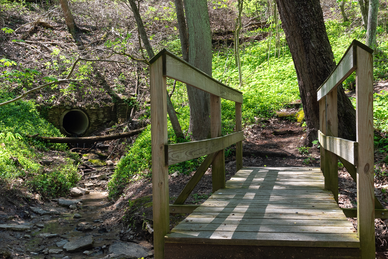 Little bridges help hikers cross the stream with ease. / Image: Phil Armstrong, Cincinnati Refined // Published: 4.25.19