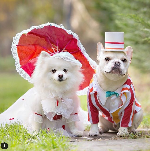 We LOVE this duo's couple costumes every year, and this supercalifragilisticexpialidocious pairing is no exception!{ }(Image: via IG user @sebastianlovesluna)