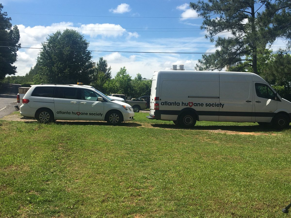 Animal control officers from Atlanta are on the scene. (Image: WTVC)