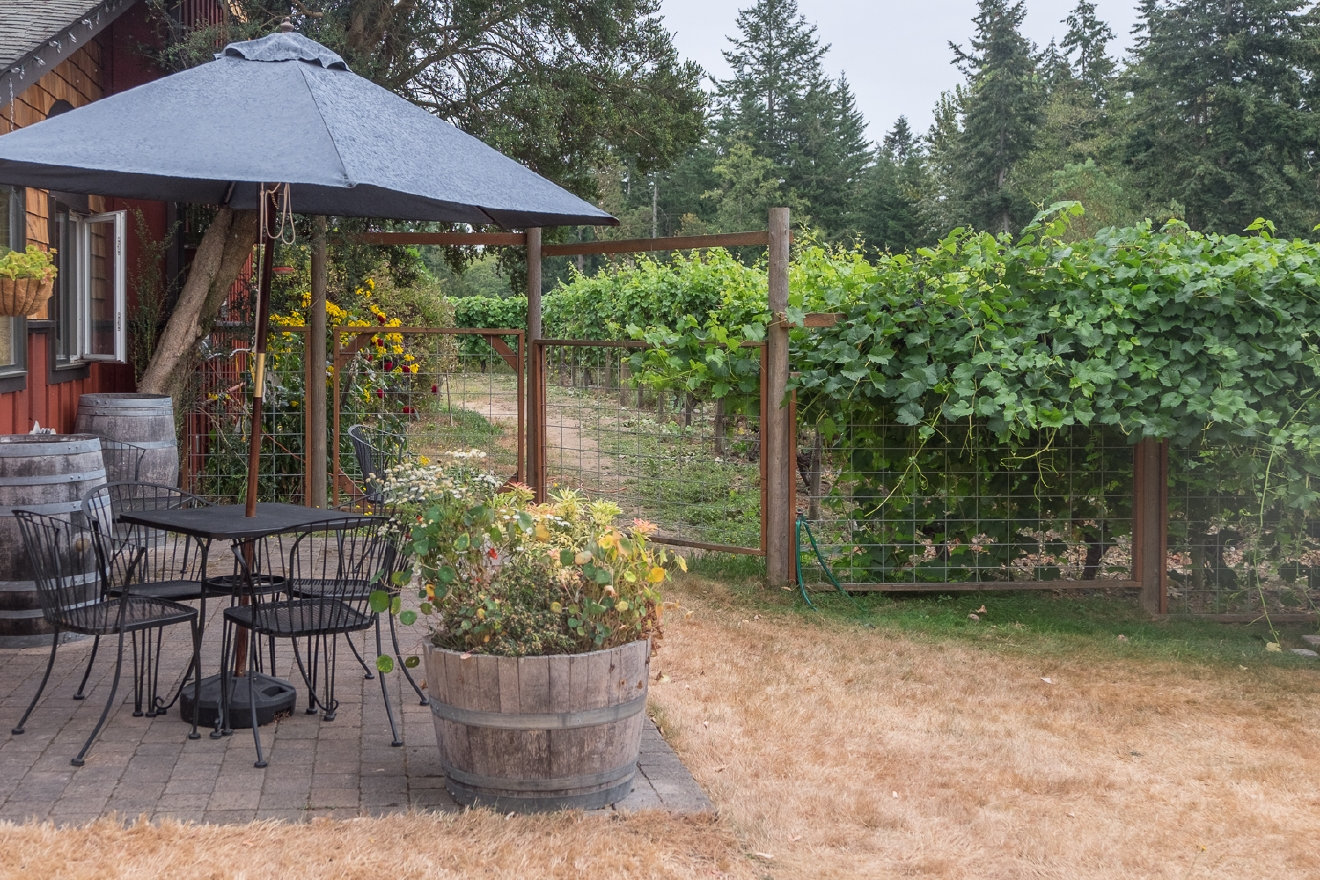 Whidbey Island Winery (Image: Paola Thomas / Seattle Refined)