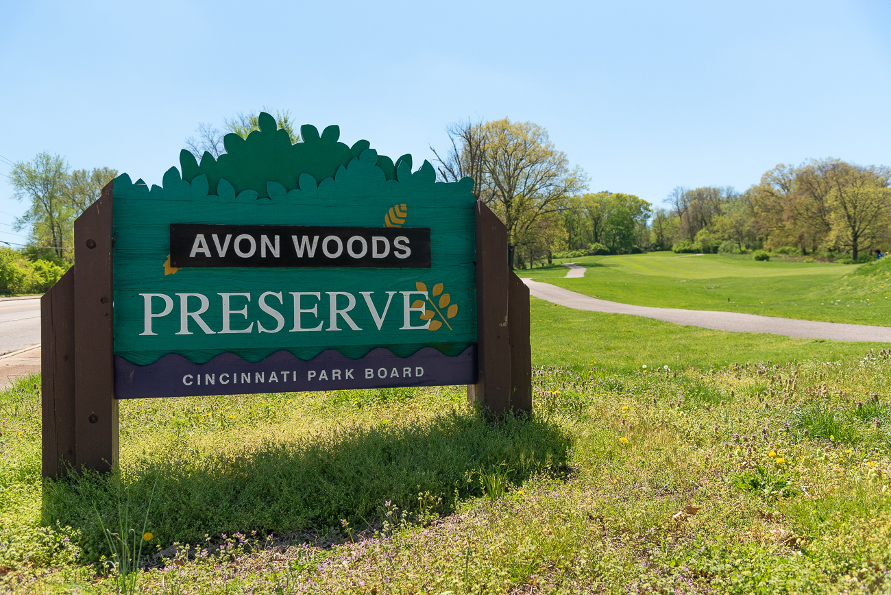 Now entering: Avon Woods Preserve! / Image: Phil Armstrong, Cincinnati Refined // Published: 4.25.19