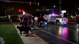 Woman hit by car while walking dogs on West Side