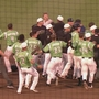 Benches clearing brawl at Dragons game Sunday night