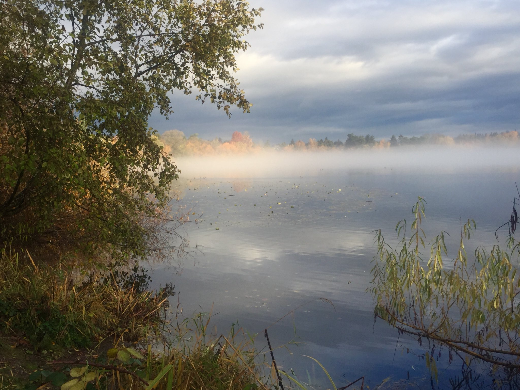 Fog on Seattle's Green Lake (Photo: Doug Pigsley)