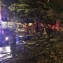 1 dead, 5 hurt as powerful storm blasts Western Washington with 50-70 mph winds