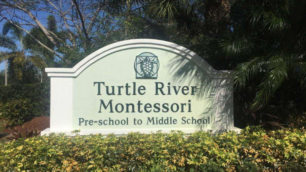 Turtle Montessori.PNG