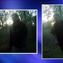Have you seen these two? Ada County searches for possible camera-stealing duo