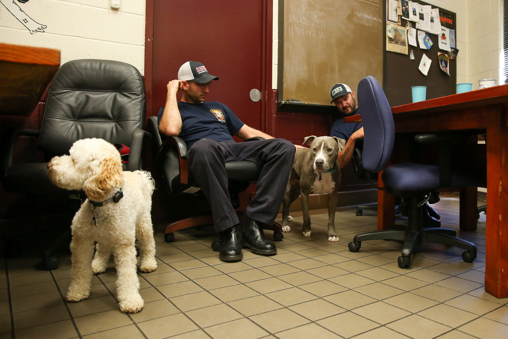 Earl Grey later joined Zucca at the Engine Company 11 fire heights. (Amanda Andrade-Rhoades/DC Refined)