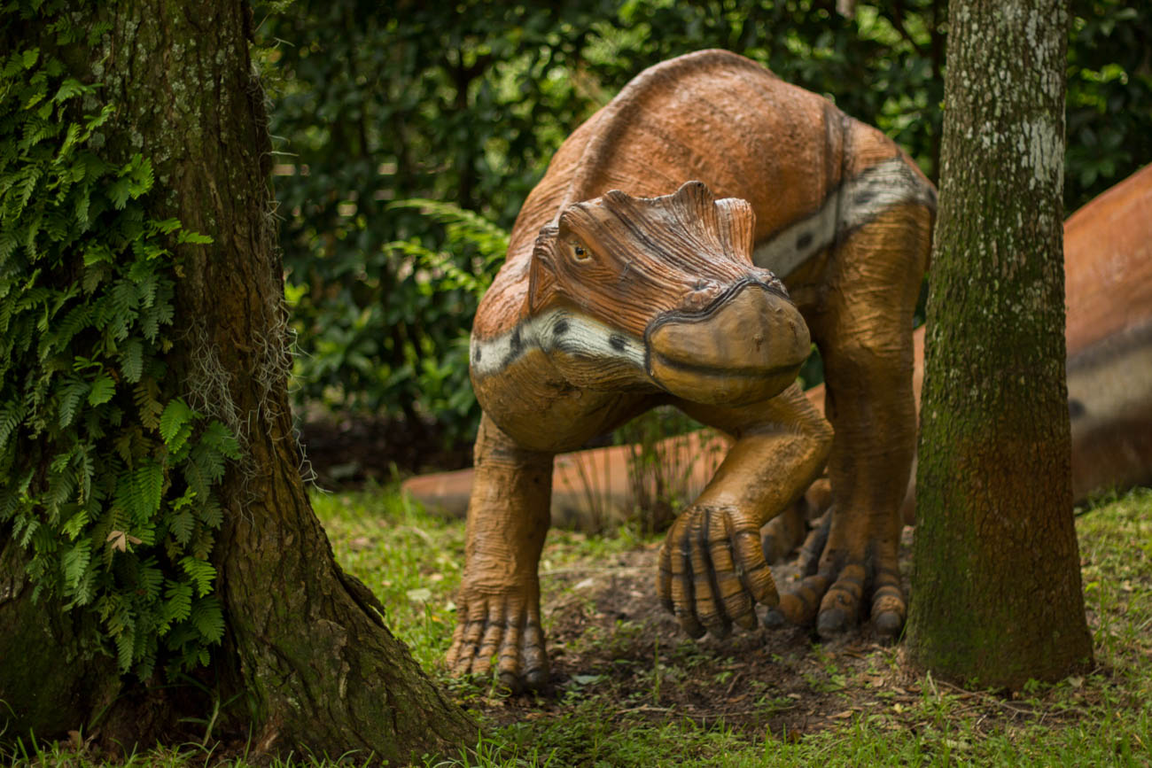 If you've ever wanted to travel back to the Mesozoic Era, Dinosaur World is the place to go. Roughly two hours and 45 minutes south of Cincinnati, it's home to more than 150 life-size dinosaurs and plenty of fascinating, interactive activities accompanying the prehistoric creatures. You can test out your paleontology skills while digging for fossils, search for authentic gems and minerals, play in the dinosaur play area, and learn even more from the exhibits inside their museum. You can even bring your pup to take part in the dino fun. It's open daily from 8:30 AM-6 PM. ADDRESS: 711 Mammoth Cave Road, Cave City, KY (42127) / Image courtesy of Dinosaur World // Published: 7.8.19