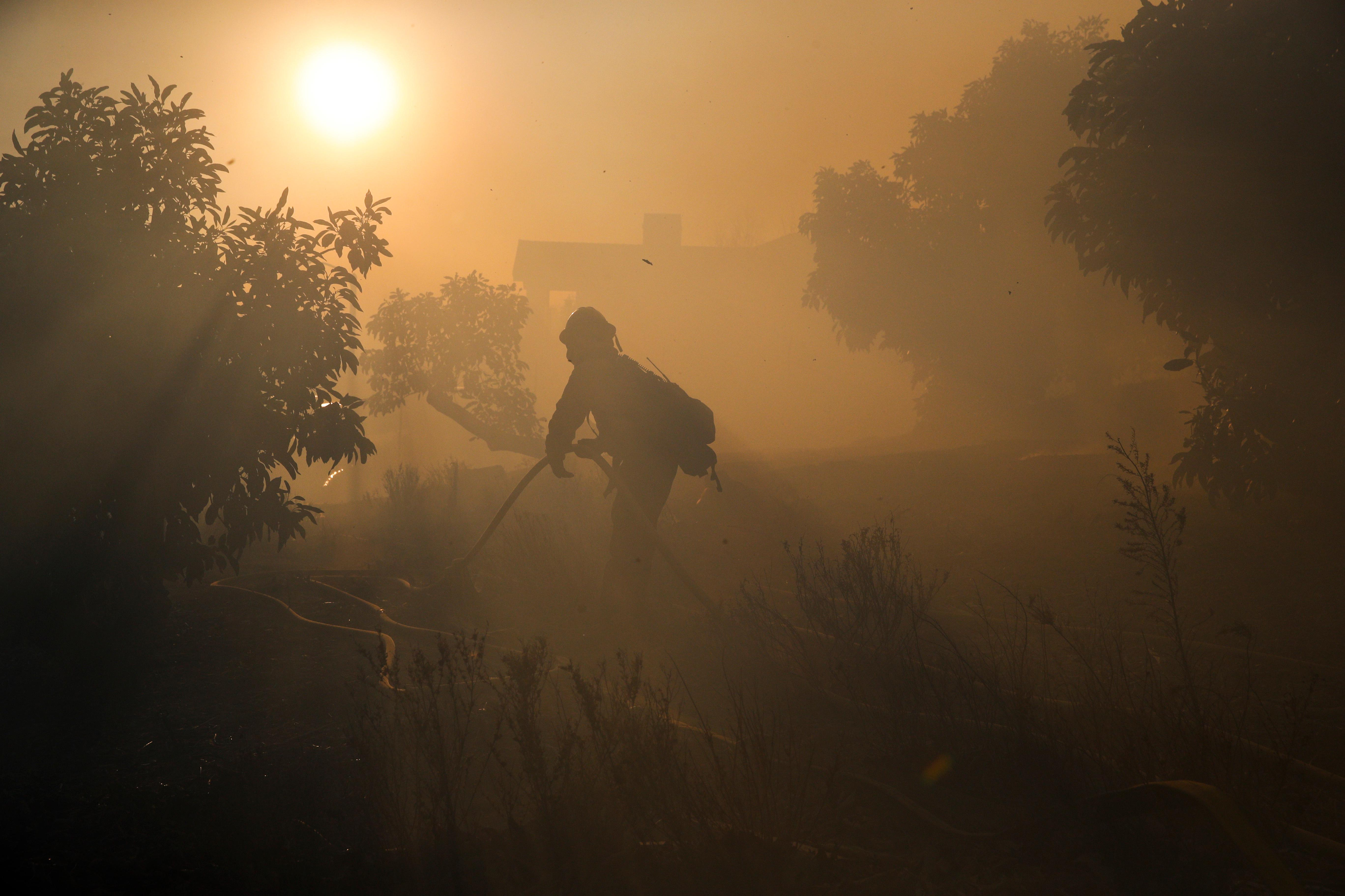 A firefighter pulls a water hose as a wildfires continues to burn Tuesday, Dec. 5, 2017, in Santa Paula, Calif. Raked by ferocious Santa Ana winds, explosive wildfires northwest of Los Angeles and in the city's foothills burned a psychiatric hospital and scores of homes and other structures Tuesday and forced the evacuation of tens of thousands of people. (AP Photo/Jae C. Hong)
