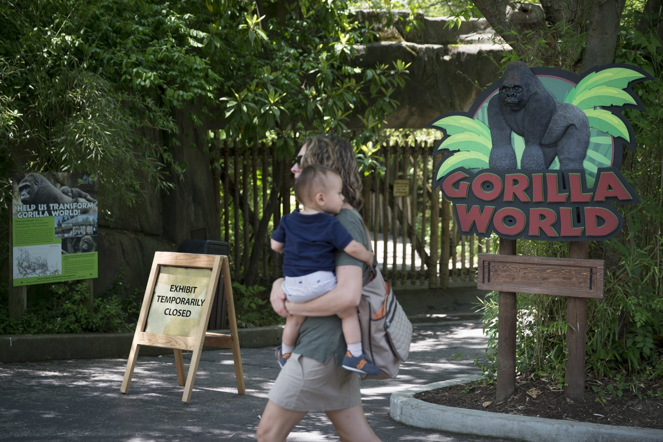 A visitor with a small child passes outside the shuttered Gorilla World exhibit at the Cincinnati Zoo & Botanical Garden, Sunday, May 29, 2016, in Cincinnati. On Saturday, a special zoo response team shot and killed Harambe, a 17-year-old gorilla, that grabbed and dragged a 4-year-old boy who fell into the gorilla exhibit moat. Authorities said the boy is expected to recover. He was taken to Cincinnati Children's Hospital Medical Center. (AP Photo/John Minchillo)