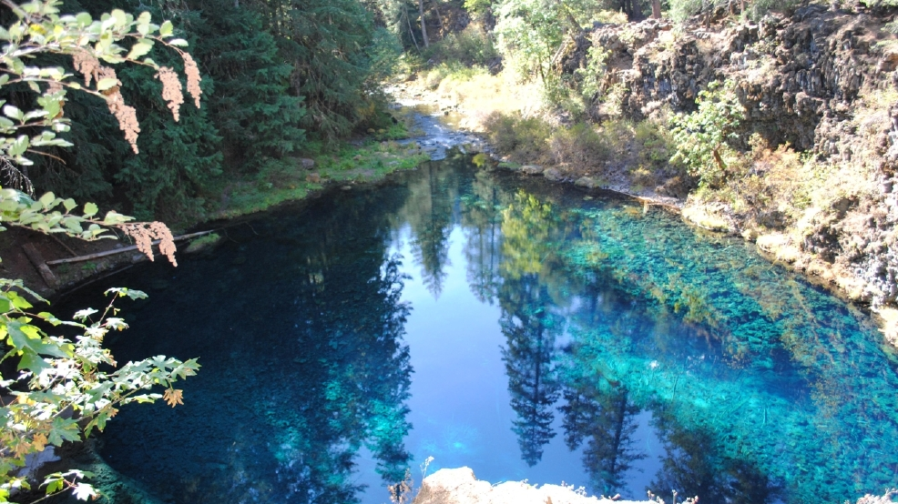 Mckenzie river trail by blue pool reopens to public kpic for Redmond or swimming pool schedule