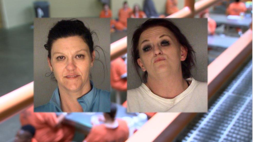 bibb county jail inmate search macon georgia - 985×554