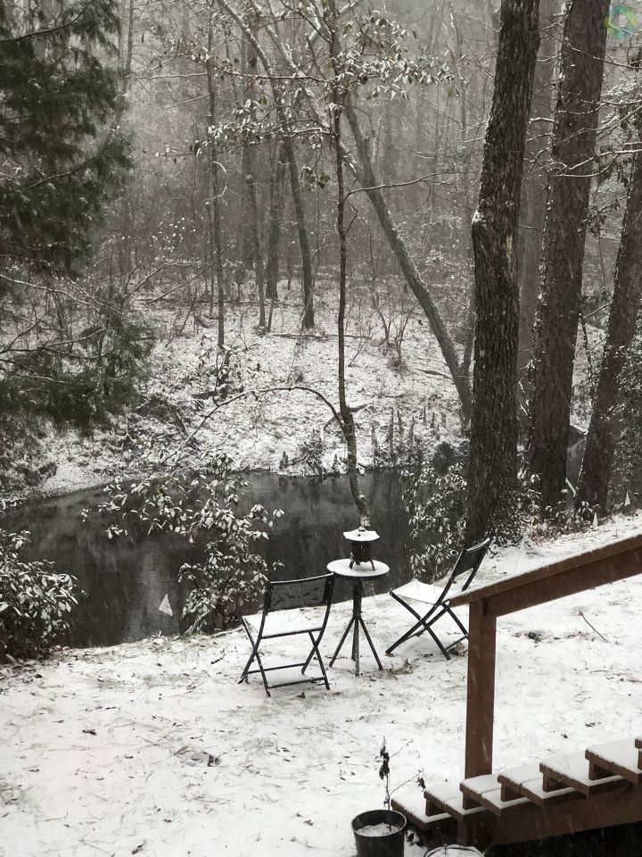 Black Creek in Darlington, SC (Submitted by Suzy Campbell)