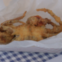 Blue Crab Festival tradition thrives despite wet weather