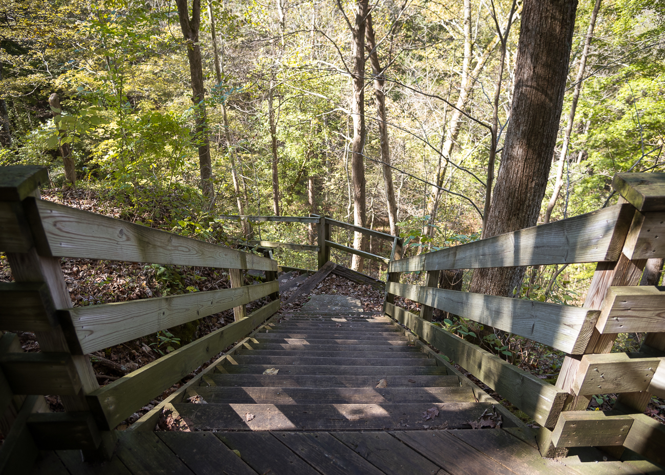 On some trails, wooden stairs and walkways add rustic convenience to the beautiful wilderness surrounding them. / Image: Phil Armstrong, Cincinnati Refined // Published: 10.20.18