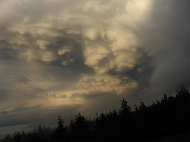 Mammatus clouds over Everett (Photo: August Pellino)