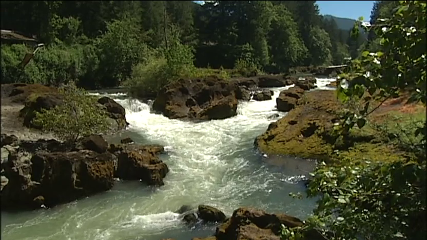The Row River near Dorena, Oregon. Still from video by Gary Sherman, KVAL News