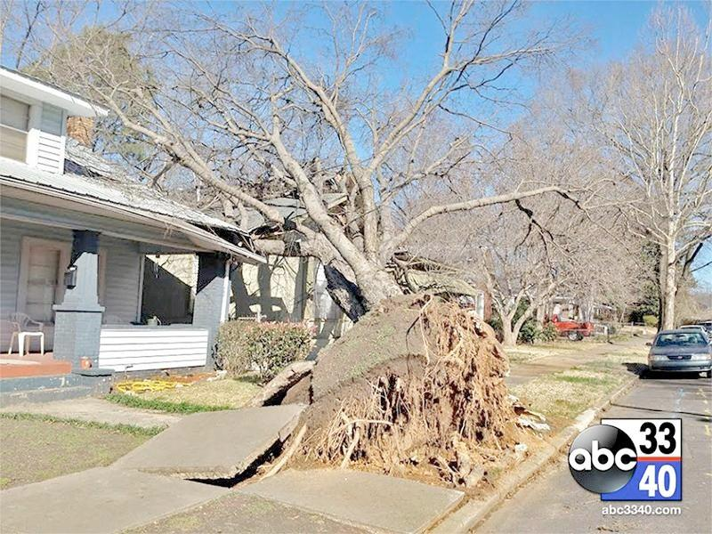 A large tree rests on a home in Ensley following strong overnight storms in Birmingham, Ala., Friday, Feb. 21, 2014.