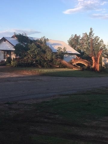 Photos show large amounts of damage to the City of Turkey following Sunday night storms. (Photo courtesy of Crystal Fuston)