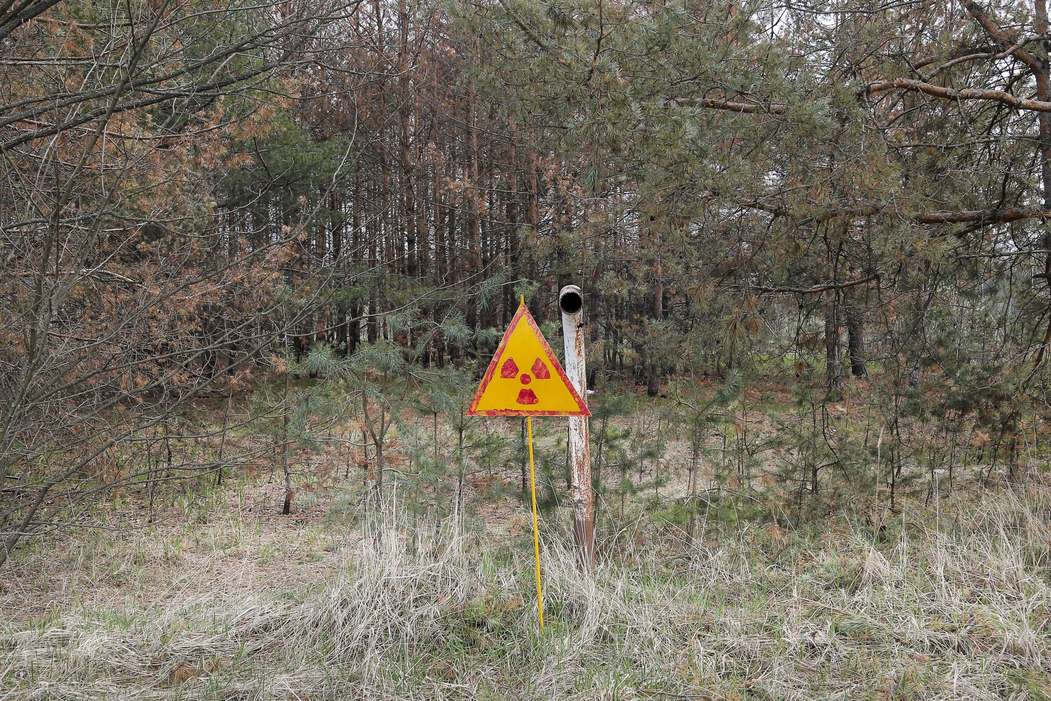 In this photo taken Wednesday, April 5, 2017, a radioactivity sign stands in the ground, outside Chernobyl, Ukraine. April 26 marks the 31st anniversary of the Chernobyl nuclear disaster. A reactor at the Chernobyl nuclear power plant exploded on April 26, 1986, leading to an explosion and the subsequent fire spewed a radioactive plume over much of northern Europe. THE ASSOCIATED PRESS