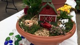 Fairy gardening tips from a local expert