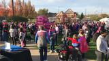 Hundreds help raise over $50,000 at Making Strides Against Breast Cancer walk