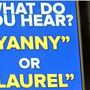 Yanny or Laurel? The debate continues in our region
